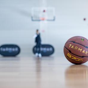 interireur-basket.jpg