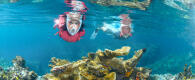 sun protection snorkeling advice subea