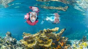 Snorkeling homme et femme