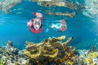 Nos conseils snorkeling randonnée palmée