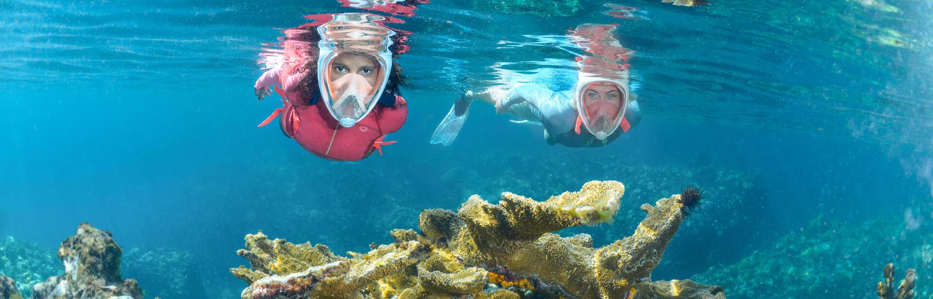 snorkeling, randonnée palmée
