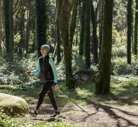 Nordic-walking-sylvotherapy-tree