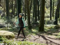 marche-nordique-sylvothérapie-arbre