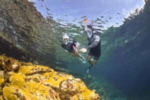 10 raisons de s'initier au snorkeling, randonnée palmée