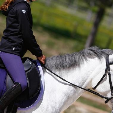 choisir un filet pour cheval