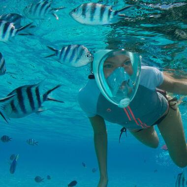 À descoberta dos gestos ecológicos no snorkeling