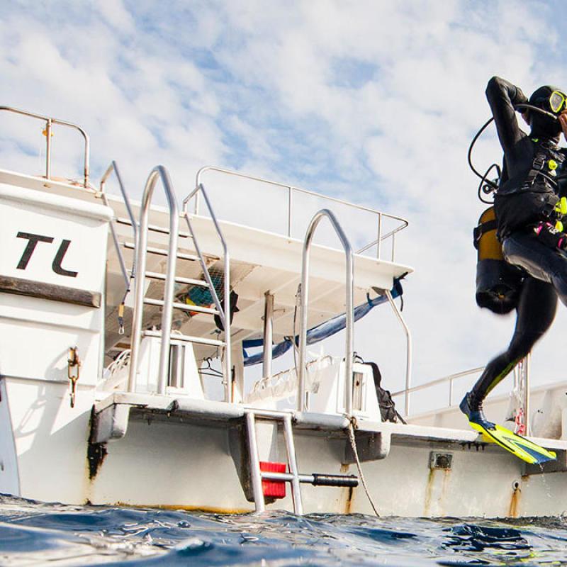 bienfaits de la plongée sous-marine subea decathlon