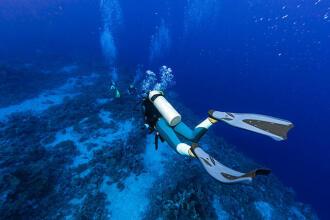 Advies hoe kies je duikvinnen subea decathlon