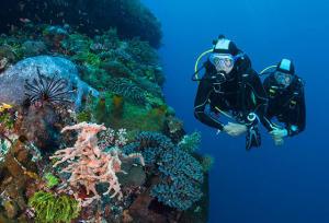 Du snorkeling vers la plongée bouteille