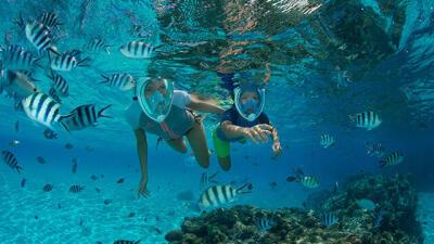 eco-gestes-snorkeling-subea-decathlon.jpg