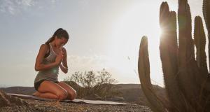 Le yoga est aujourd'hui l'activité à pratiquer par excellence dans une société pressée et stressée. Les effets de cette pratique sont innombrables, tant physiques que mentaux.