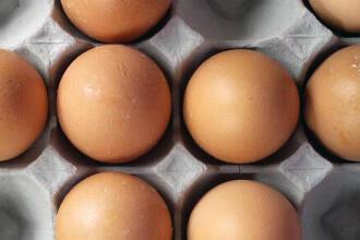 高蛋白食物 APTONIA 1