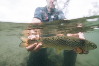 thumbnail que técnica usar para pescar truta