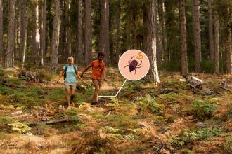 Comment bien se protéger des tiques en randonnée