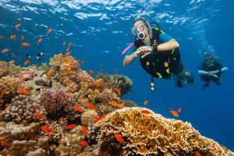 découvrir la plongée sous-marine subea decathlon