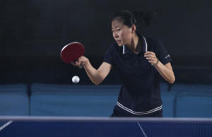 tabletennis, pingpong, ping pong banner
