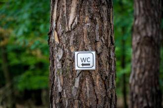 如何在樹林中上大號?- 預告