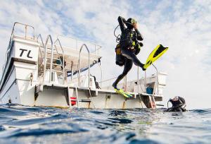 benefícios mergulho subea decathlon