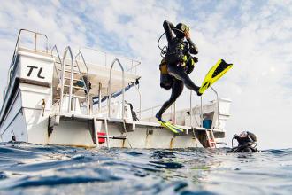 潛水的好處 迪卡儂subea