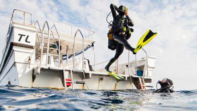 bienfaits-plongee-sous-marine-subea-decathlon-tb.jpg