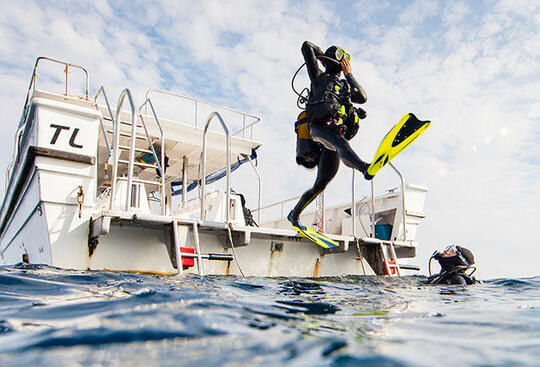 潛水 | 潛水的好處