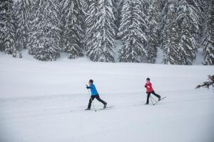 teasing ski de fond