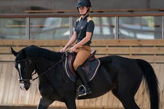 léxico equitação fouganza decathlon