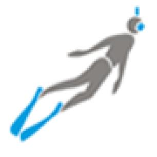 logo snorkeling
