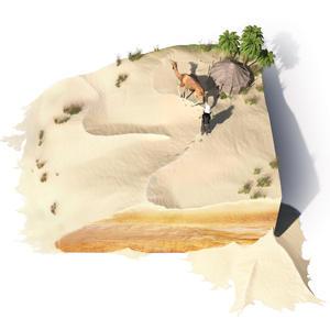 Beauté désert sable expérience