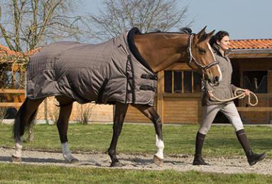 comment choisir une couverture pour votre cheval ?