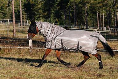 comment choisir une chemise mouche pour votre cheval ?