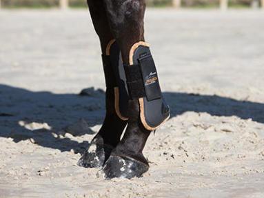 Comment choisir protections des membres cheval ?
