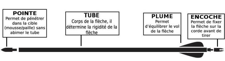 Comment_choisir_flèches_tir_arc.jpg