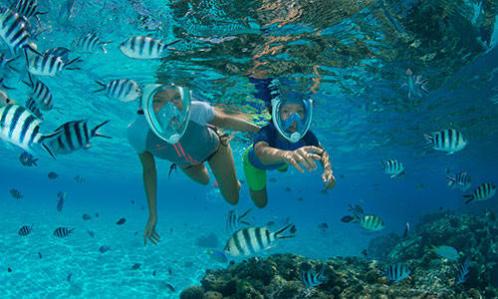 comment choisir lestage snorkeling randonnée palmée subea decathlon