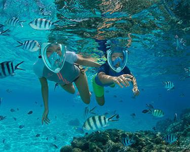 choisir-lestage-snorkeling-randonnee-palmee-subea-decathlon.jpg