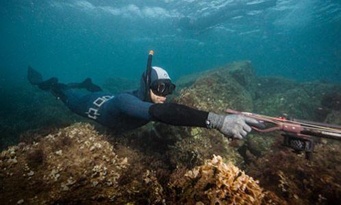 comment choisir lestage chasse sous-marine apnée subea decathlon