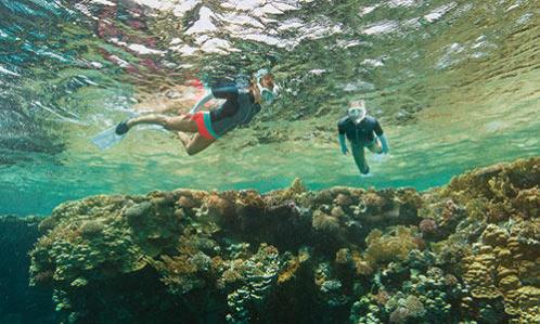 sécurité snorkeling randonnée palmée lutter contre le froid subea decathlon