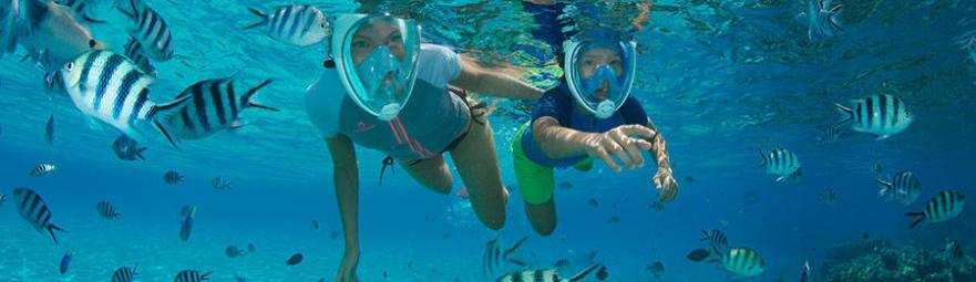 règles sécurité snorkeling randonnée palmée masque easybreath subea decathlon