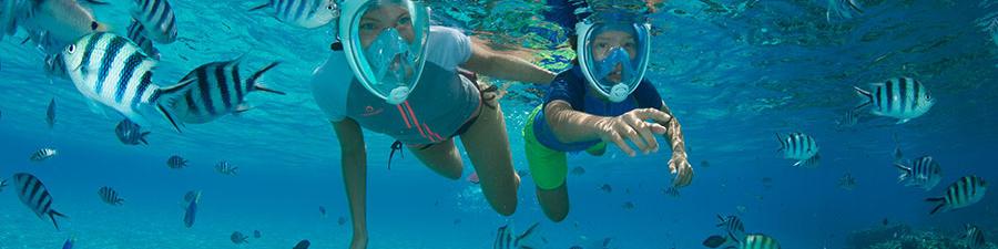 Le masque de snorkeling Easybreath inventé et conçu par Subea
