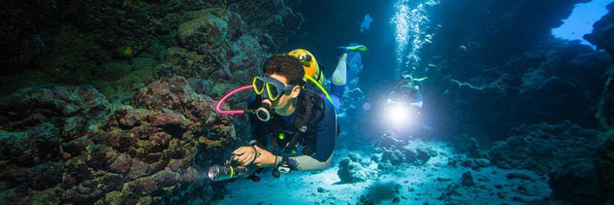 du snorkeling vers la plongée bouteille étapes subea decathlon