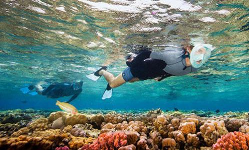 La Decathlon A Des Snorkeling Découverte Gestes Éco En pT8FwTx
