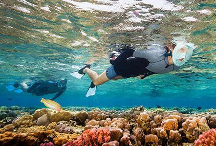 liste éco gestes snorkeling randonnée palmée subea decathlon