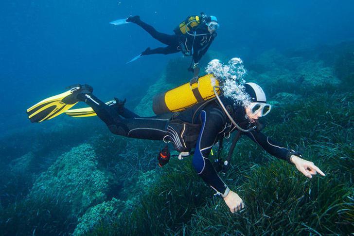 comment choisir combinaison plongée sous marine subea decathlon
