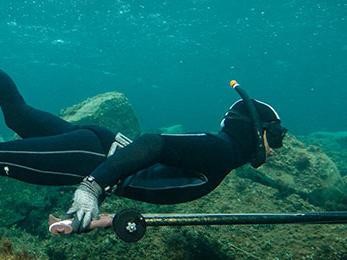 Comment choisir sa combinaison de chasse sous-marine ?