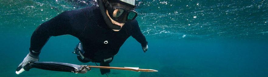 A composição de uma arma de caça submarina