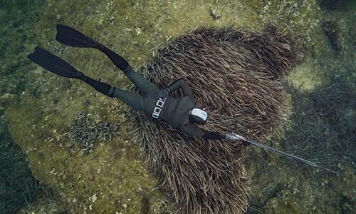 Technique de la chasse à l'agachon