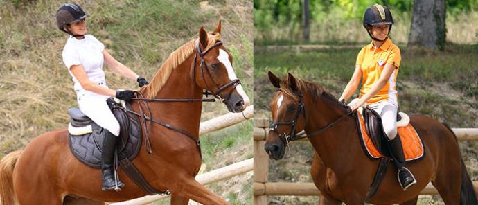 robes de chevaux