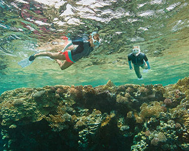 Les conseils de sécurité en plongée et snorkeling