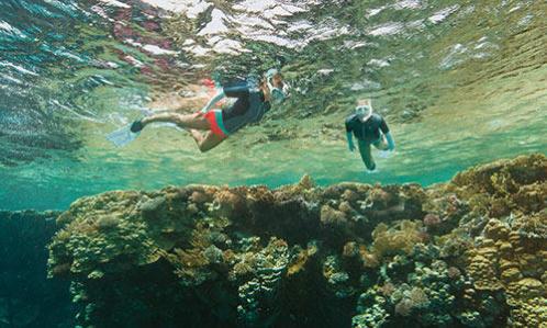 sécurité plongée snorkeling decathlon subea