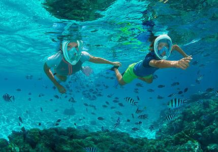 令人驚豔的海底世界!